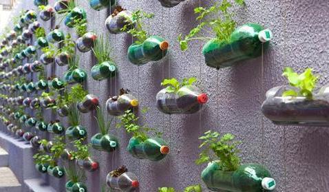 Изготовление ваз из пластиковых бутылок своими руками
