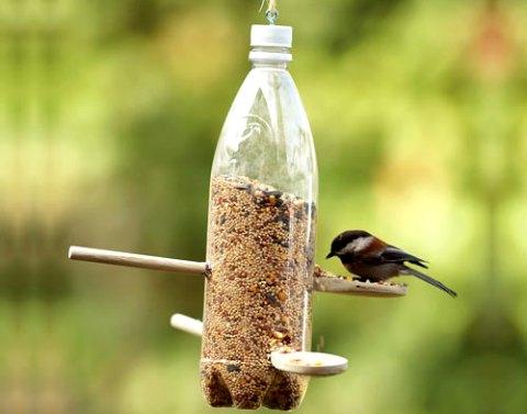 Как сделать кормушку для птиц своими руками - фото и видео