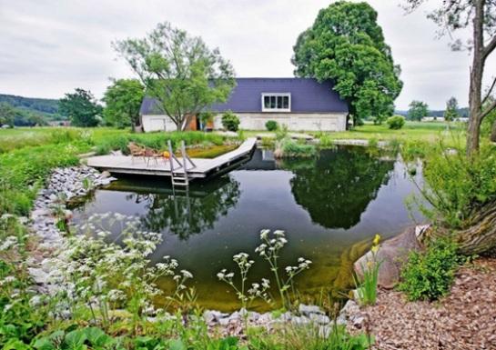 Оформление и обустройство пруда на даче своими руками - варианты и фото